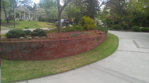 Driveway with Retainer Wall